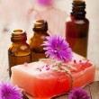 Handmade herbal soap - Stock Photo