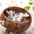White flowers in bowl for spa - Stock Photo
