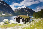 Traditional norwegian house at Eikesdalsvatnet lake — Stock Photo