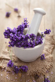 Fresh lavender in mortar — Stock Photo