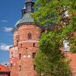 Stock Photo: Gripsholm castle
