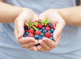 Hands holding fresh berries — Stock Photo