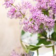 Lilac flowers — Stock Photo #23677295