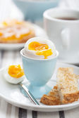 Boiled egg for breakfast — 图库照片