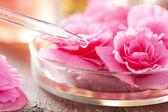 Begonia kwiaty i pippette. aromaterapia i spa — Zdjęcie stockowe