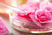 Begonia flowers and pippette. aromatherapy and spa — Stock Photo