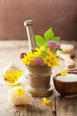 Mortar with flowers and herbs for spa — Stock Photo
