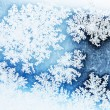Winter rime background  — Stock Photo