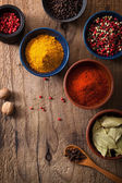 Spices in bowls: pink and black pepper, paprika powder, curry, b — Stock Photo