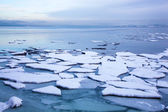 Ice floe in winter Norway — Stock Photo