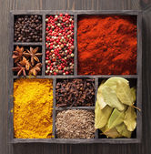 Spices in box pink and black pepper, paprika powder, curry, — Stock Photo