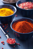 Spices in bowls: curry, pink and black pepper, paprika powder  — Stock Photo