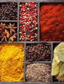 Spices in box pink  black pepper, paprika powder, curry — Foto Stock