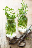 Fresh thyme and rosemary herbs in glass  — Stock Photo