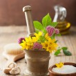Mortar with flowers and herbs for spa and aromatherapy — Stock Photo #47823273