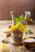 Mortar with flowers and herbs for spa and aromatherapy — Stock Photo