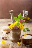 Çiçekler ve bitkiler için Aromaterapi ve spa havan topu — Stok fotoğraf