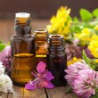 Essential oils and medical flowers herbs — Stock Photo #49540571