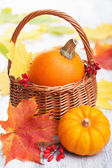 Decorative pumpkins and autumn leaves in basket  — Stock Photo