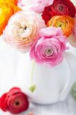 Beautiful ranunculus flowers in vase  — Stock Photo