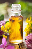 Essential oil and medical flowers herbs — Stock Photo