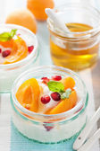 Healthy breakfast with yogurt apricot pomegranate honey  — Stockfoto