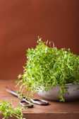 Fresh thyme herb in metal bowl — Stock Photo