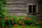 Old rural wooden house — Stock Photo