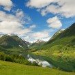 Lake in norwegian mountains — Stock Photo