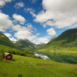 Small house in scandinavian panorama - Stok fotoraf
