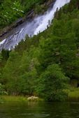 Dvě ovce proti vodopád — Stock fotografie