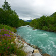 River in scandinavian landscape — Stockfoto
