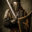 Medieval knight with a sword — Stock Photo