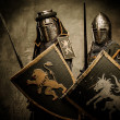 Medieval knights — Stock Photo #13489629
