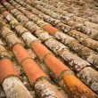 Old roof tile close-up - Stock Photo