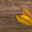 Stock Photo: Autumn leaves on wooden background