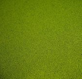 Close-up view of artificial green grass background — Stock Photo