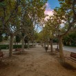 Benches in beautiful park in Barcelona, Spain — Stock Photo #14859971