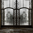 Closed old metal gate — Stock Photo #15658011
