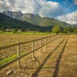 Small wooden fence in field — Stock Photo