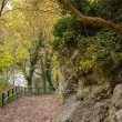 Walkway near river in Fontaine-de-Vaucluse, France — Stock Photo #16260351