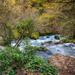 Fast river in Fontaine-de-Vaucluse, France - Stock Photo