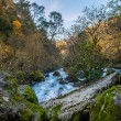Fast river in mountains — Stockfoto