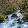 Fast river in Fontaine-de-Vaucluse, France — Foto Stock