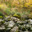 View of moss-grown rocks — Foto Stock