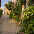 Stock Photo: Narrow street of old town
