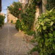 Narrow street of old town - Stock Photo