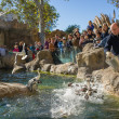 BARCELONA - OCTOBER 28: Feeding penguins in Zoo De Barcelona, on October 28, 2012 in Barcelona, Spain — Foto Stock