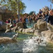 BARCELONA - OCTOBER 28: Feeding penguins in Zoo De Barcelona, on October 28, 2012 in Barcelona, Spain — ストック写真