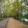 Beautiful walkway view by lake - ストック写真